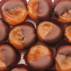 Dark dipped apricots